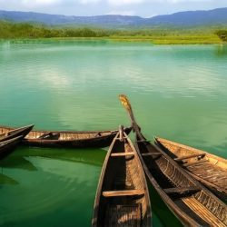 Canoes sitting together on a blue-green river in Vietnam.