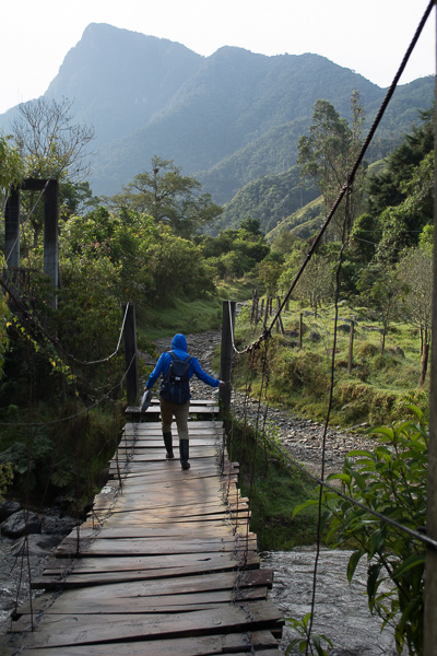 Wooden bridge with rope supports facing mountains in Valle del Cocora