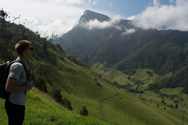 Standing on mountainside in valle del cocora salento, colombia